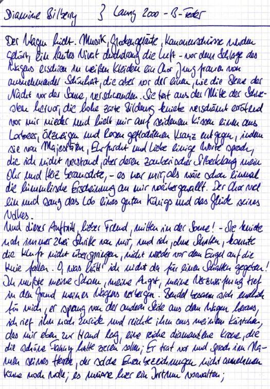Diamine Bilberry Testkarte Fließtext