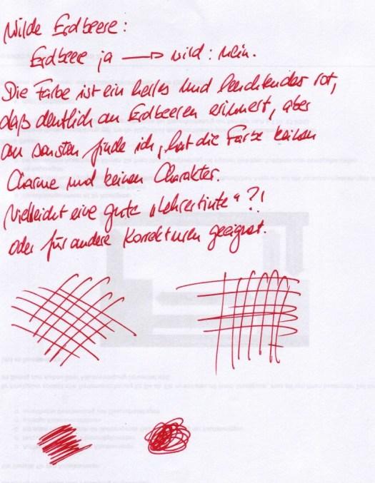 Diamine Wilde Erdbeere - Einführung
