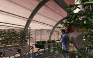 These geologists recreate the soil of Mars in an attempt to grow food there