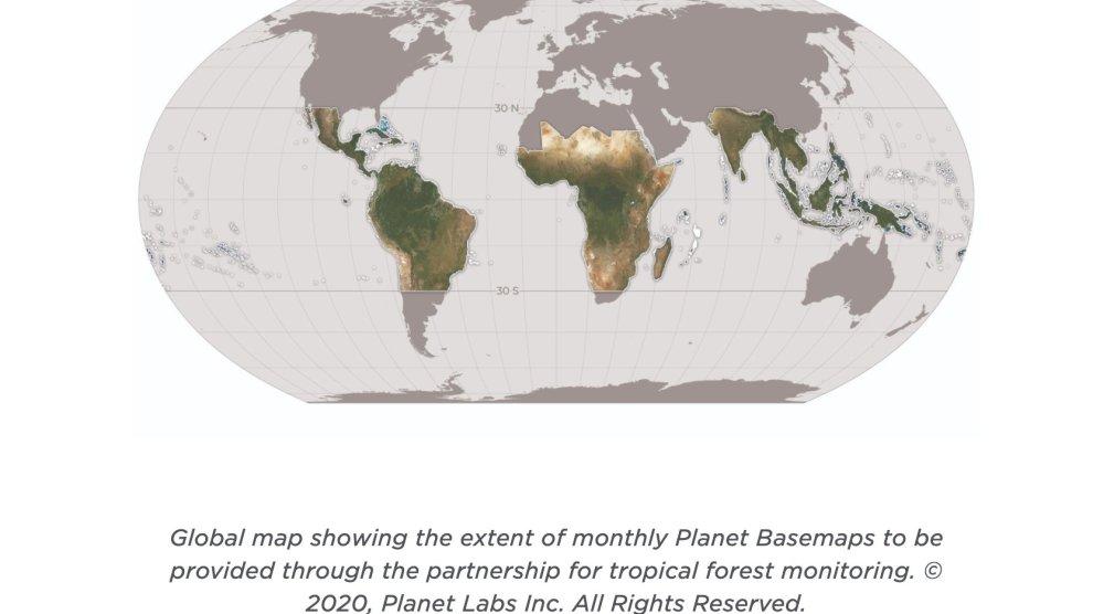 43 millions $ pour lutter contre la déforestation tropicale