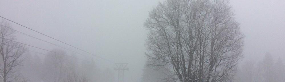 Die Bahn im Nebel