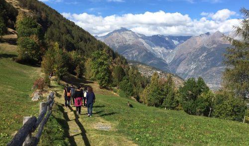 Wanderweg Burgen - Zeneggen