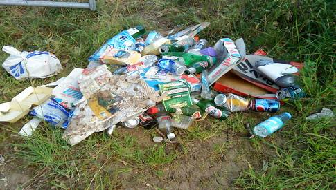 Image result for litter