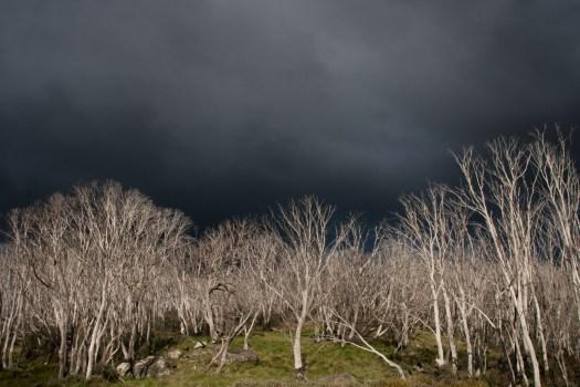 Image of storm over Western's Hut, Bogong High Plains