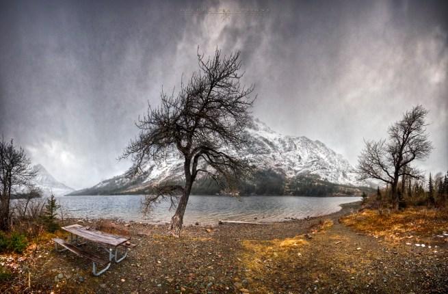 Glacier-Park-Bench-13a