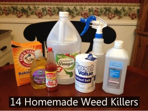 Ingredients to make homemade weed killers