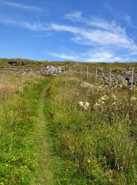 The path over the hill