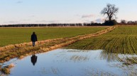Water on the fields