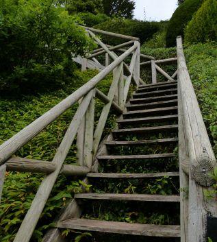 A wooden hill