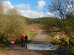 Sher brook stepping stones