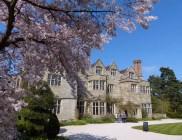 Benthall blossom