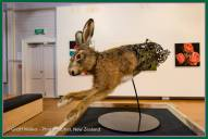 Sean Crawford's March or is the Movember hare....