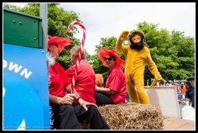 Greytown Xmas Parade Lionesses....