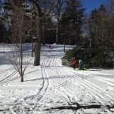 2016 01-18 Arnold Arboretum Snow Day 2