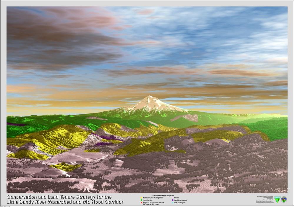 3D VISUAL NATURE STUDIO (2/3)
