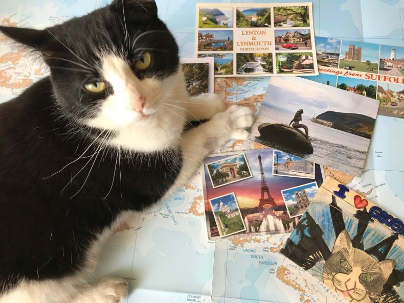 g cat and postcards