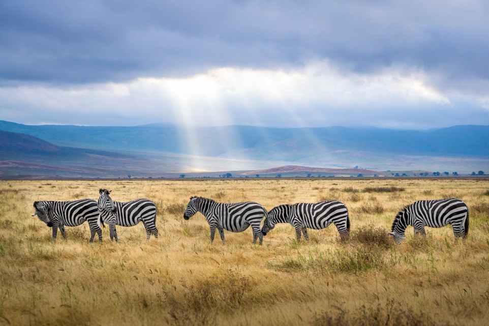 10 negative impact of tourism in Botswana