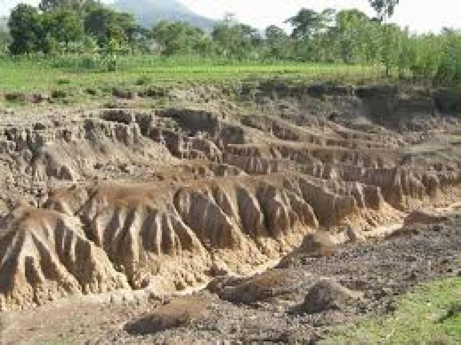 Image result for soil erosion