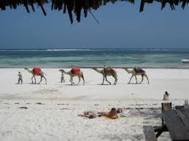 Image result for mombasa