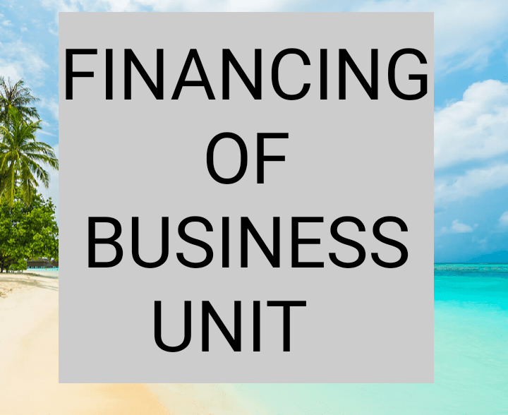 Financing of business unit