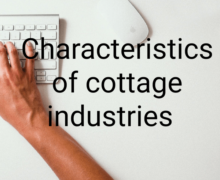 Characteristics of cottage industries