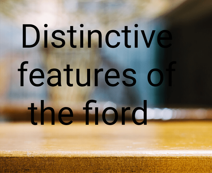 Distinctive features of fiord