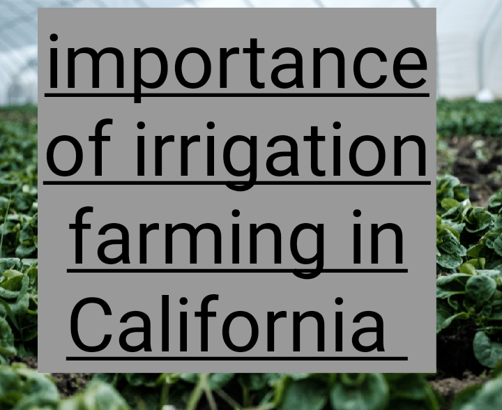 Importance of irrigation farming in California