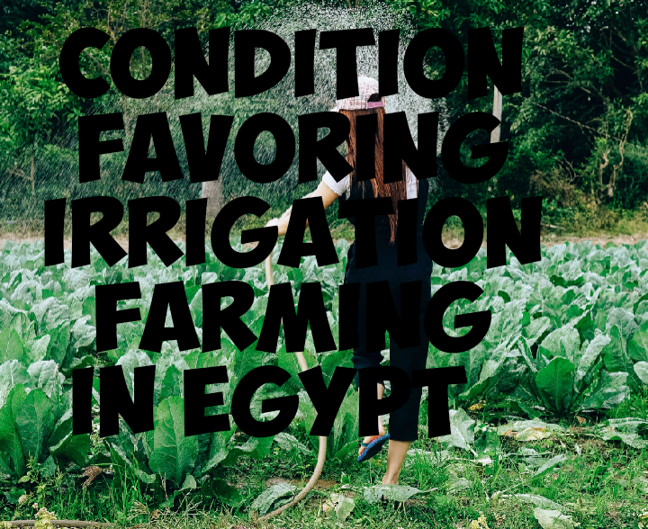 Conditions favoring irrigation farming in egypt