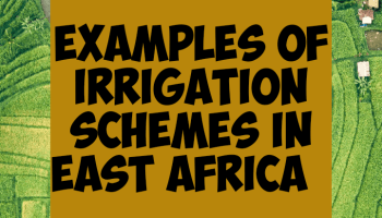 Examples of irrigation schemes in East africa