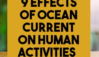 9 effects of ocean current on human activities