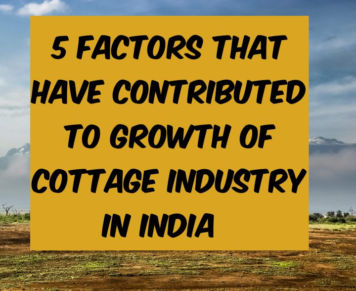 5 factors that have contributed to GROWTH OF COTTAGE INDUSTRY IN INDIA