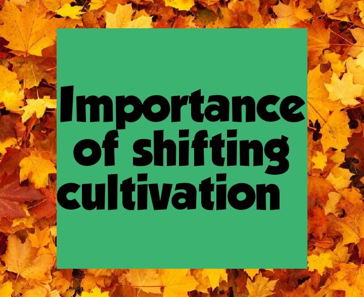 Importance of shifting cultivation