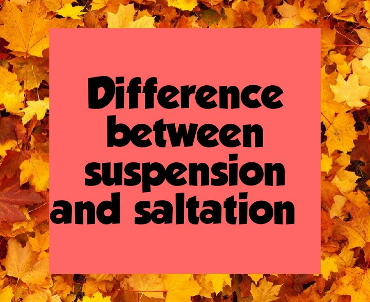 Difference between suspension and saltation