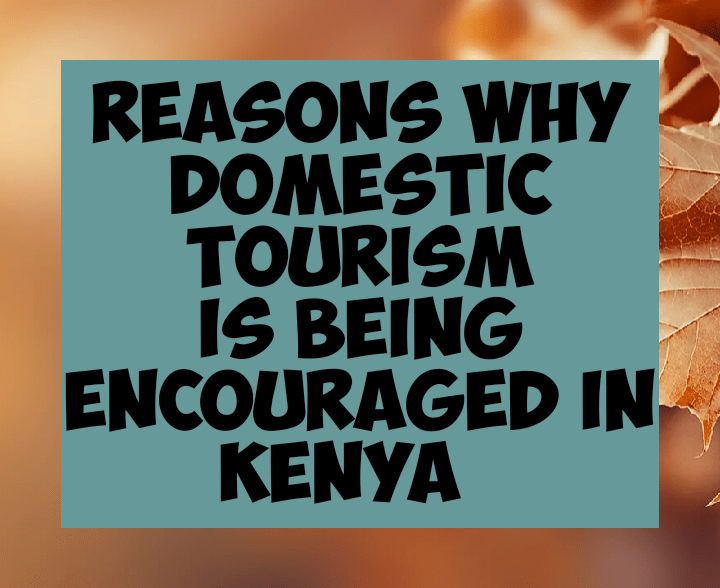Reasons why domestic tourism is being encouraged in kenya