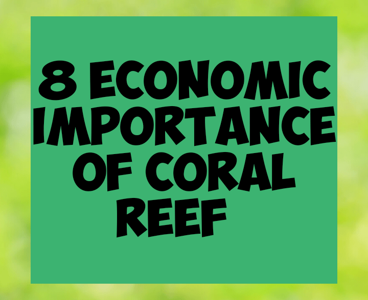 8 economic importance of coral reefs