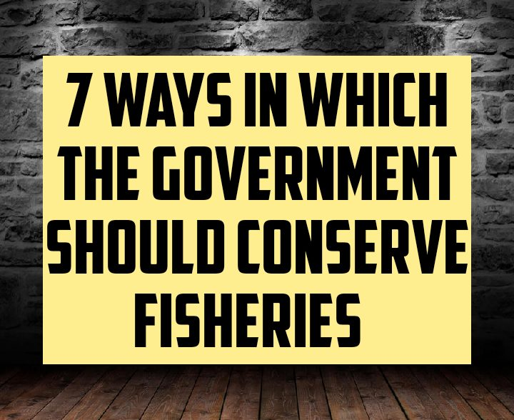 7 ways in which the government should conserve fisheries