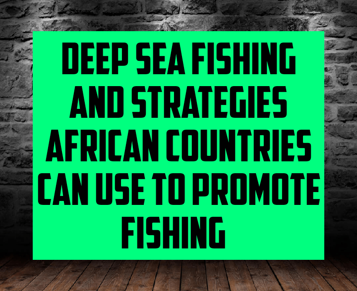 Deep sea fishing and strategies Africans countries can use to promote fishing