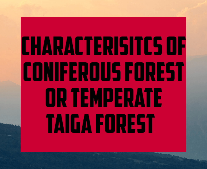 Characteristics of coniferous forest or temperate Taiga forest