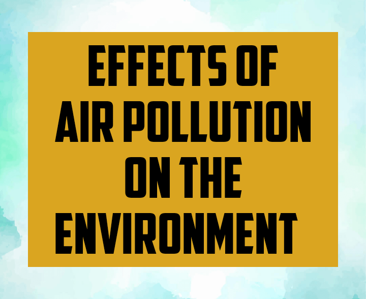 Effects of air pollution on the environment