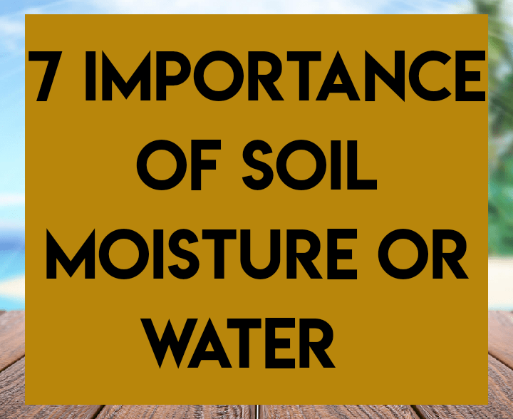 7 importance of soil moisture or water