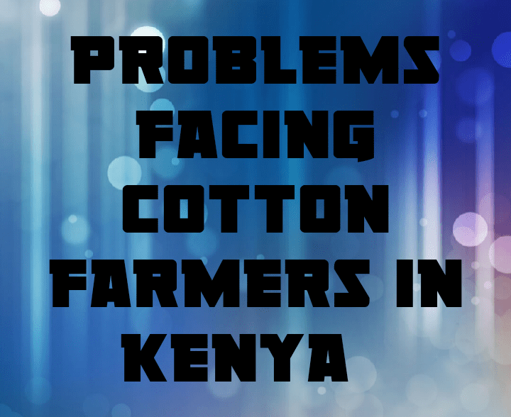 Problems facing cotton farmers in kenya