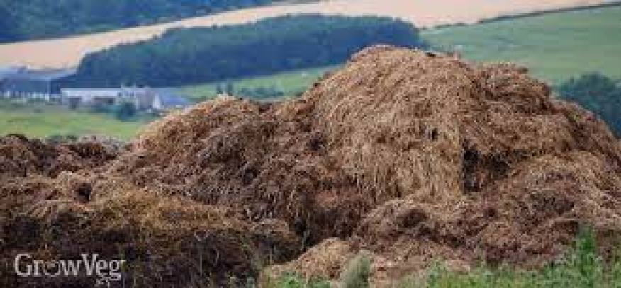 Control of industrial fertilizers instead of depending on industrial fertilizer we can use manure since manure has no effect on the soil while industrial fertilizers add acid to the soil