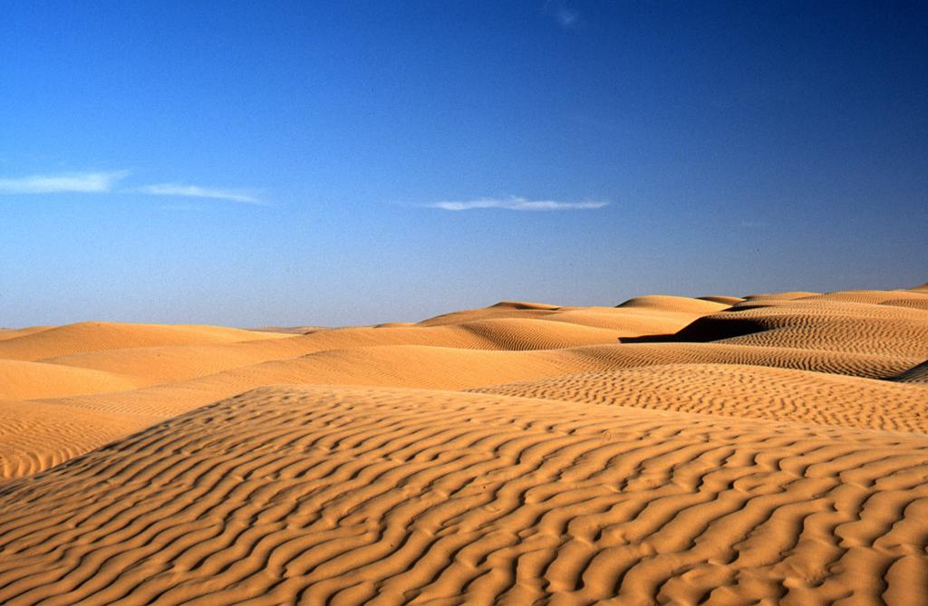Sand Dunes are Low ridge of sand accumulated by wind deposition