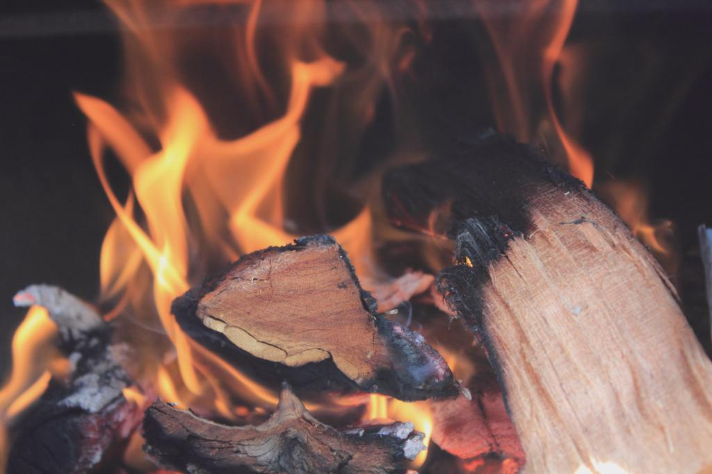 Advantages and disadvantages of wood fuel