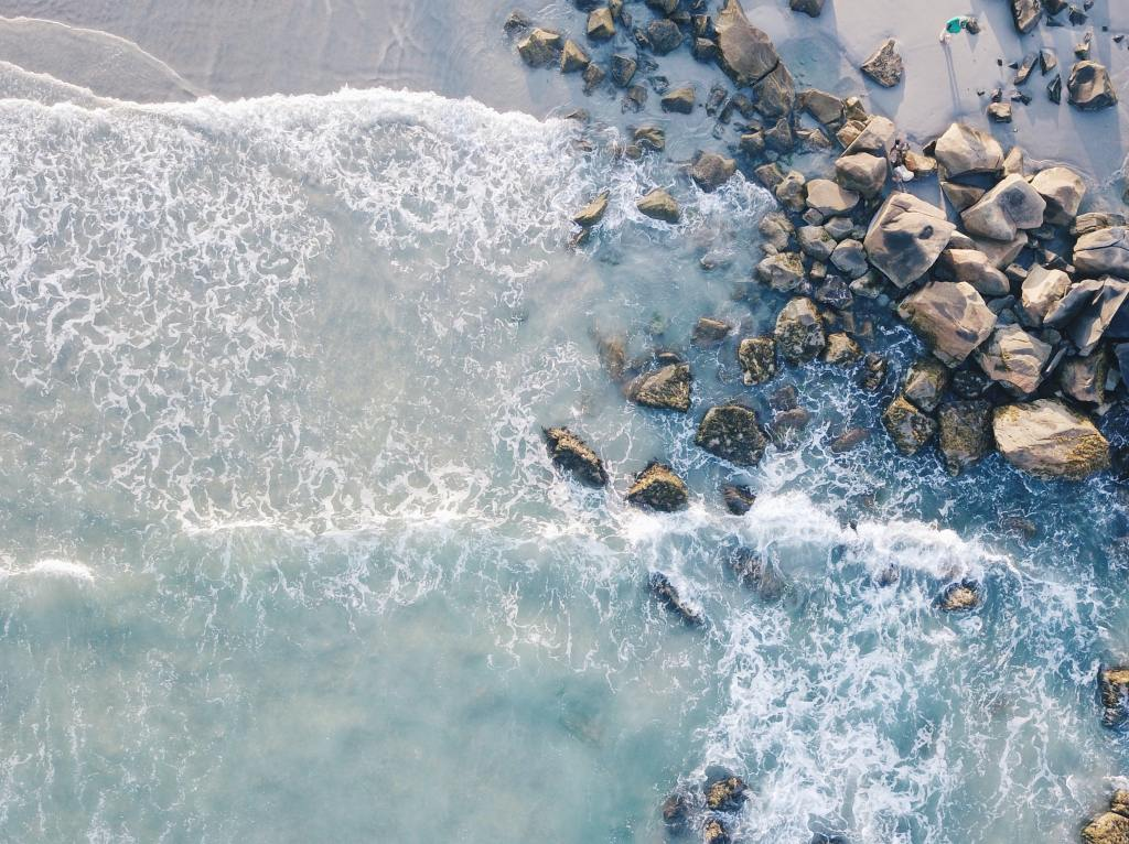 The tide is a periodic rise and fall in the level of the ocean and other large water bodies