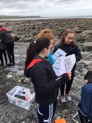 Second Year Coastal Fieldwork - March 2017
