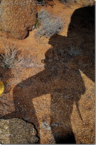 01a Gaelyn's shadow leaning against a rock Weaver Mts Yarnell AZ (678x1024)