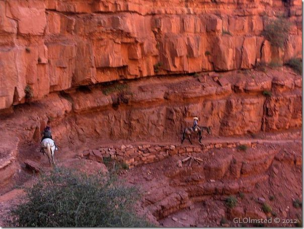 06e Diane & Lisa on mules Roaring Springs Canyon GRCA AZ (1024x768) (1024x768)