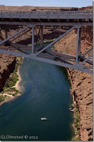 08e Snout heading down CO R from Navajo Bridge AZ