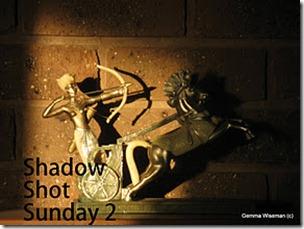 Shadow Shot Sunday 2 meme